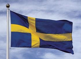 Bild på Nationsflagga Sverige